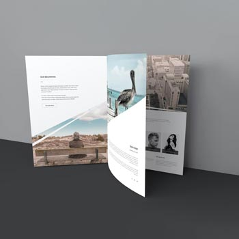 tree page brochure mockup