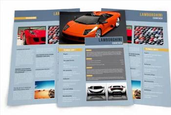 Vehicle DataSheet