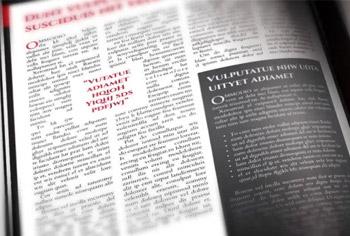 Political Newsletter Tabloid