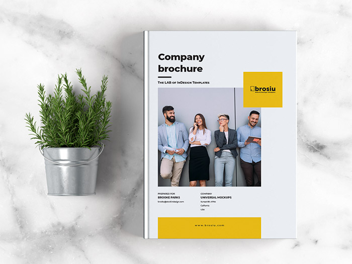 Free Brochure Template for Adobe InDesign